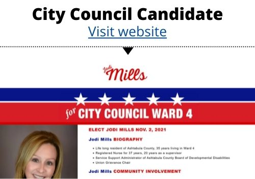 Image of City Council Candidate Website
